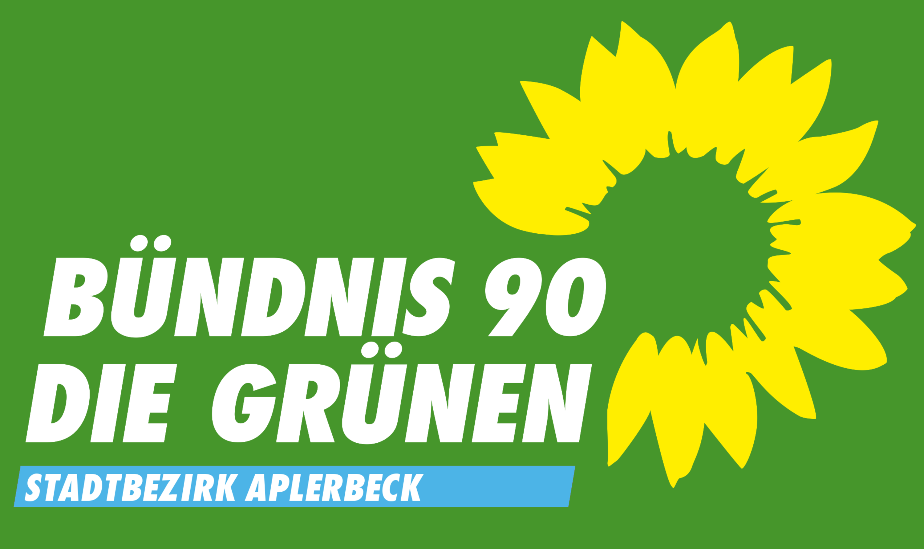 Wahlbanner